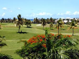 golf-de-saint-fran