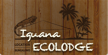 The Iguana Ecolodge